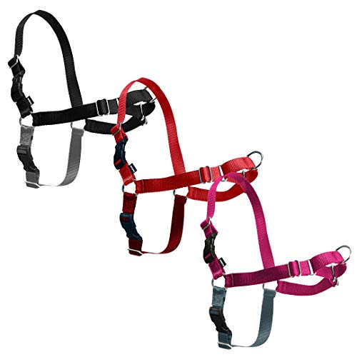 PetSafe Easy Walk Harnas, Small/Medium, Framboos