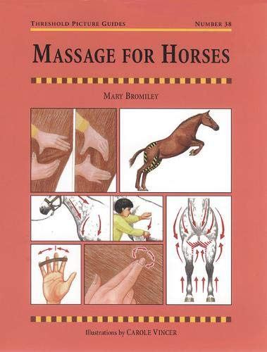Image OfMassage For Horses