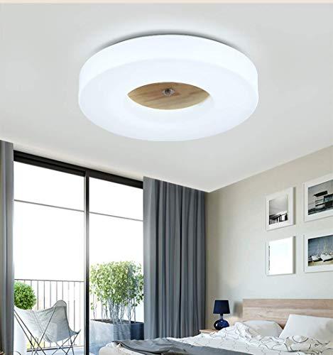 YZYZYZ lámpara de techo Lámpara de techo Lámpara de techo LED regulable Lámpara de techo con diseño moderno y redondo Lámpara de acrílico de metal de luz Pantalla de techo Iluminación en el pasillo Ho