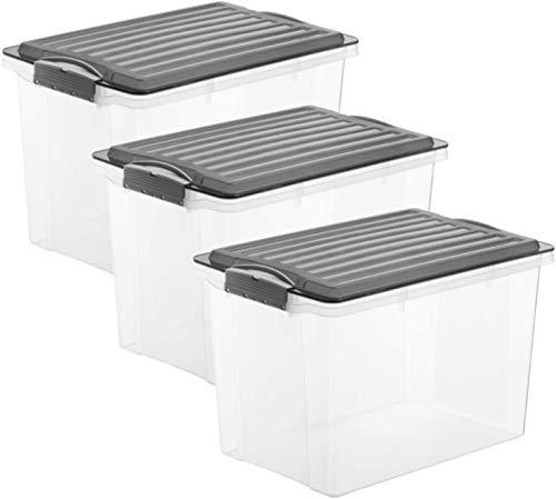 Rotho Compact 3er-Set Aufbewahrungsbox 19l mit Deckel, Kunststoff (PP) BPA-frei, anthrazit/transparent, 3 x 19l (40,0 x 28,0 x 27,0 cm)