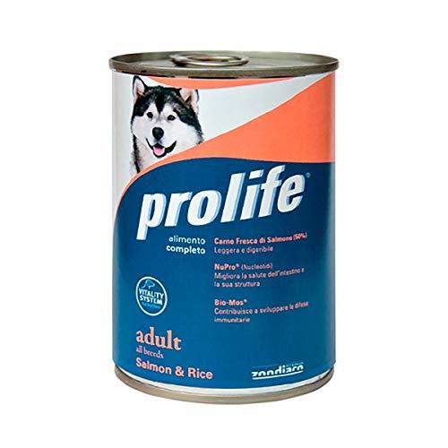 Prolife Adult Saumon et riz humide pour chiens 400 g