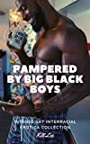 Pampered by Big Black Boys: Intense Gay Interracial Erotica Collection