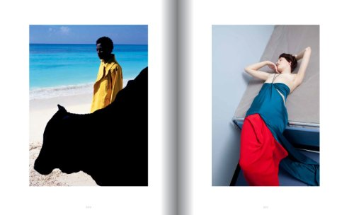 Viviane Sassen: In and Out of Fashion