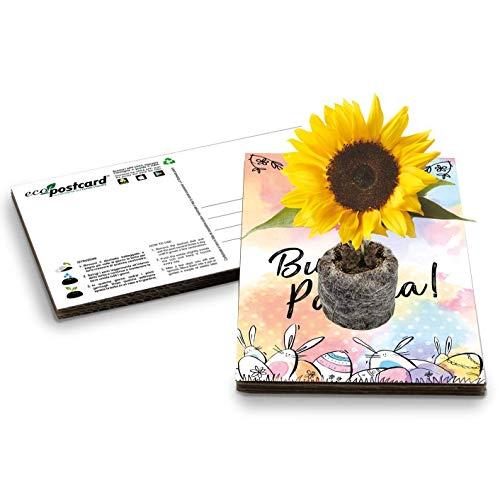 Eco-Postcard | Biglietto d'auguri ecologico di Pasqua