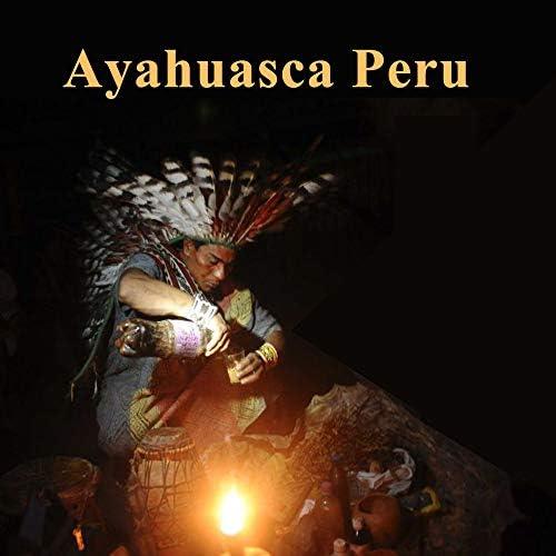 Ayahuasca Peru