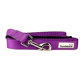 Doodlebone Dog & Puppy Leads – 10 Bold Colours / 3 Sizes