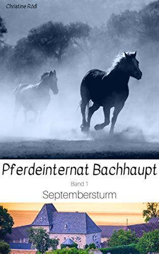Septembersturm (Pferdeinternat Bachhaupt 1)