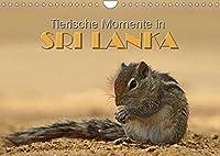 Sri Lanka - Tierische Momente (Wandkalender 2022 DIN A4 quer): Dieser Kalender gibt einen Einblick in die Tierwelt Sri Lankas (Monatskalender, 14 Seiten )