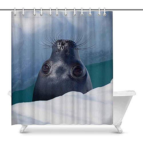 FANCYDAY grappige Weddell Seal door een ademend gat in het ijs waterdichte polyester stof douchegordijn badkamer sets met haken
