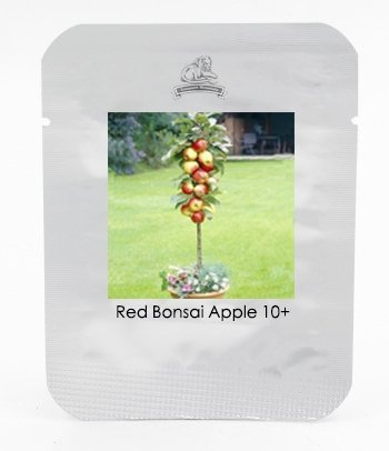 Graines Sweet Red Bonsai Apple Tree Fruit Bio, Professional Pack, 10 Graines / Pack, Great Tasty Juicy Fruit # NF664