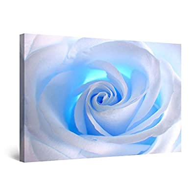 Startonight Canvas Wall Art - White Rose Abstract Flower, Framed 32 x 48 Inches by Made in Transylvania