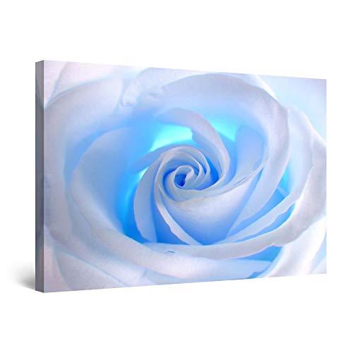 Startonight Cuadro Moderno en Lienzo Rosa Blanca Azul, Pintura Flor para Salon Decoración 60 x 90 cm