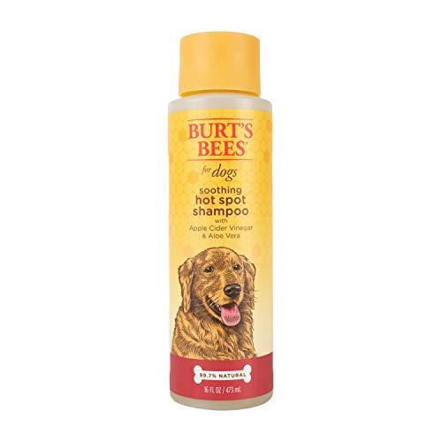 Burt\'s Bees for Dogs Champú natural Hot Spot con vinagre de sidra de manzana y aloe vera | Champú para cachorros y perros, 16 oz