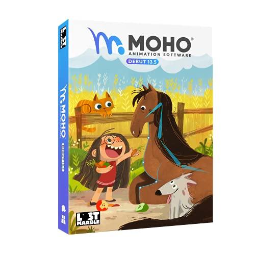 MoHo Debut 13.5 Create your Bild