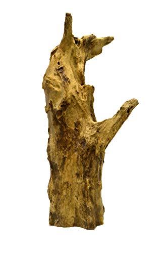 Brillibrum Design Natur Teakholz Wurzel außergewöhnliche Baumwurzel Naturbelassen aus Teak Dekoration für Terrarien & Aquarien Holzwurzel Dekofigur einzigartig Baumstammwurzel Wurzel 1000-1500g
