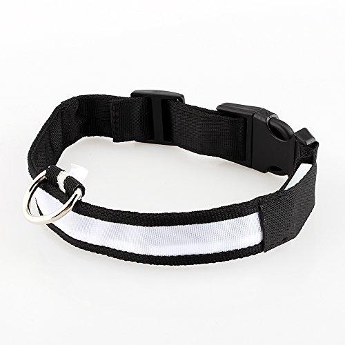 Camidy LED Nacht Haustier Halsband wasserdichte Haustiere Hund Hell LED Leuchtenden Hals Halsband Leuchtende Nacht Hundehalsbänder