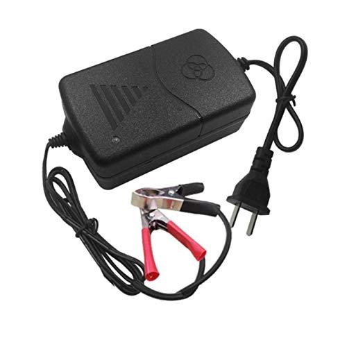 Miwaimao Cargador de batería de Coche Landia de 12 V, Mantenimiento de Motocicleta, amperios, voltios, Cargadores de luz de Plomo y ácido, Accesorios de Coche