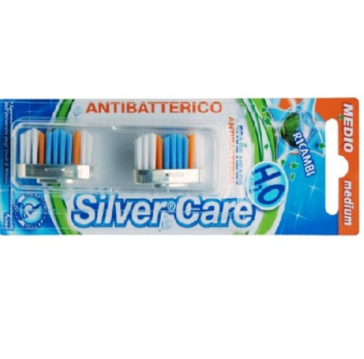 統治可能オリエンタル三角形シルバー抗菌歯ブラシ スペア 普通