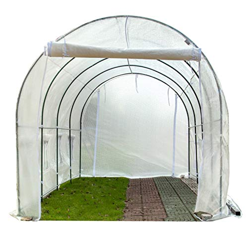Plastico Invernadero Huerto Terraza Invierno Invernadero Vegetal Túnel de Polietileno con Estantes de Estructura de Metal, Growhouse de Plantas de Tomate Al Aire Libre, 2m / 3m / 4m / 5m / 6m Largo