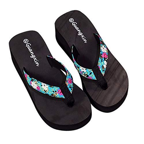 Luckycat Chanclas Zapatillas de Playa de tacón Alto Beach Sandalias de Mujer...