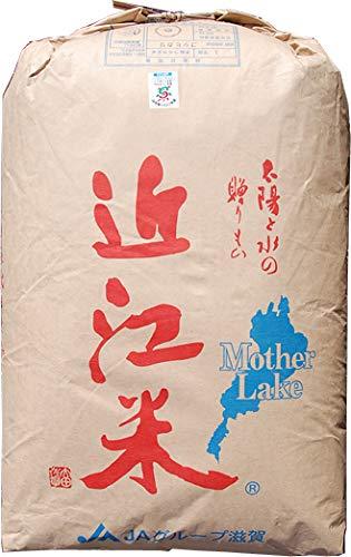 【元年産】玄米 10kg 環境こだわり米 無農薬 滋賀 こしひかり (3分づき米に)