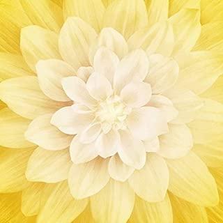 Dream Big - Digital Panel #P4389-221-Honeysuckle Large Floral -Honeysuckle- by Hoffman Fabrics