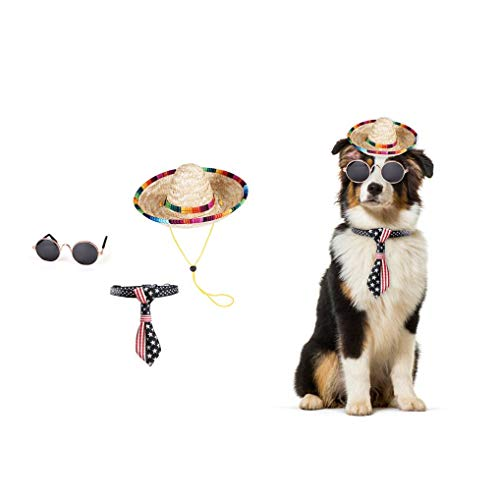 WODISON 3 PCS Cool Pet Dog Cat Costume with Hat Sunglasses and Cute Tie Collar Review