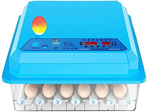 FZYE Incubadora automática de Huevos, 56 Huevos LED, Control automático de Temperatura y Giro de Huevos de Alta eficiencia, ventilación automática Incubadoras de Huevos para incubar GAL