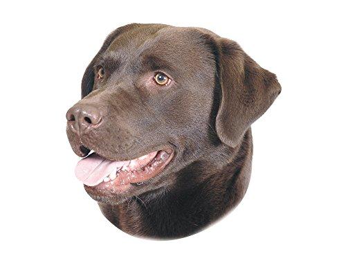 Nobby Sticker Labrador bruin geel 12 x 3,5 cm