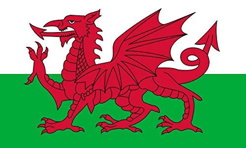 WS UK - Bandera de pas grande con anillas (91,4 x 152,4 cm aproximadamente), Gales
