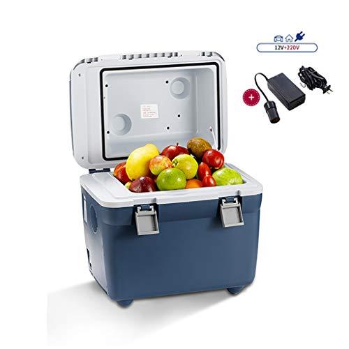 YXWbx Mini frigoriferi 20L Raffreddare Box Car Frigorifero, 12v / 220V Piccolo Mini Frigo Raffreddamento & scaldino, for Bevande/Birra/Vino/Pesce/Frutta/casa e in Viaggio (Size : DC/AC)
