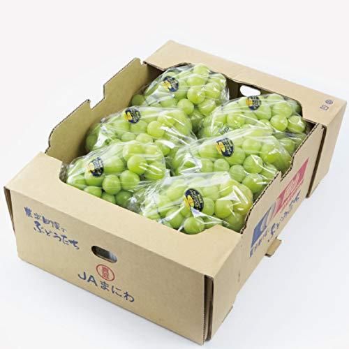 ぶどう シャインマスカット 晴王 青秀 5〜10房 約5kg 岡山県産 JAおかやま お中元 葡萄 ブドウ