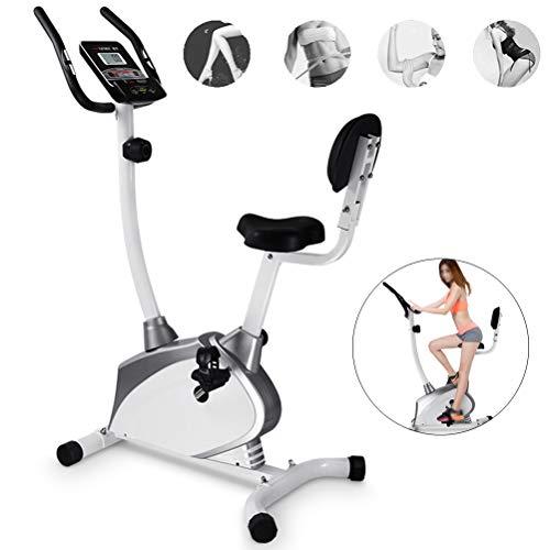Duxiuying hometrainer, verticaal, spinner fiets thuis, met rugleuning, fitnessuitrusting, voor training thuis (zilver)