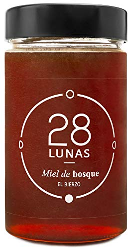 Miel de Bosque - 100{8f1b9b9ef6c59d3a32953d1293b20ca6b8d12ce3deb50722f2042d5e27c5d4cb} Natural Pura de Abeja, Cruda, 1Kg - Origen: El Bierzo, España