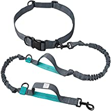 TaoTronics TT-PA006 Retractable Hands Free Dog Leash with Waist Wearing, Reflective Sithching & Dual Bungees for up to 150 lbs Large Dogs
