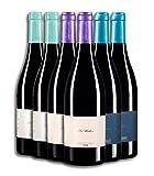Vino Tinto - Leyenda del Páramo - Leyendas de Vida - Estuche con Vinos tintos premiados - Uva Prieto Picudo - Caja de 6 botellas de 75 cLitros(x2ud) APRENDIZ + (x2ud) MEDICO + (x2ud) MUSICO.