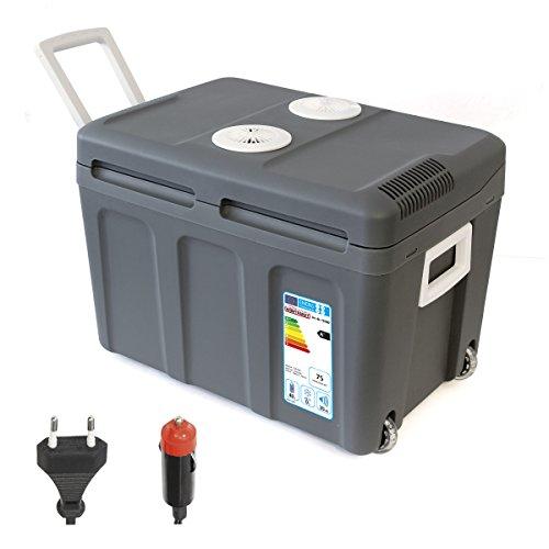 Dino Kraftpaket 13100 Elektrische koelbox, thermo-elektrische thermobox