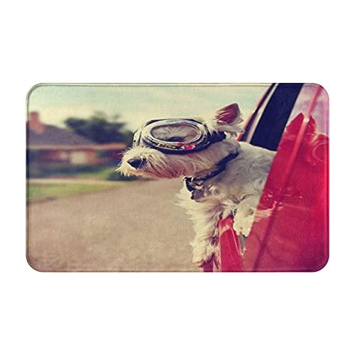 JISMUCI Felpudo Entrada Casa Rectangular Un Lindo Perro Westie West Highland Terrier paseando en un automóvil por una Calle de un vecindario Urbano Impermeable Antideslizante Lavable Alfombra 50x80cm