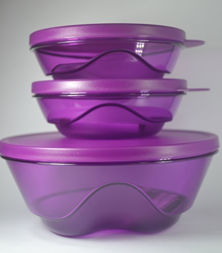 Kit Tupperware Policarbonato Design Roxo