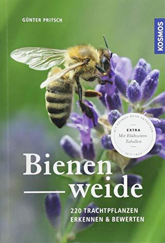 Bienenweide: 220 Trachtpflanzen erkennen und bewerten