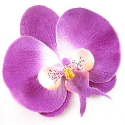 Boolavard TM Orchid Flower Hair Clip Bridal Hawaii Party Girl (Purple)