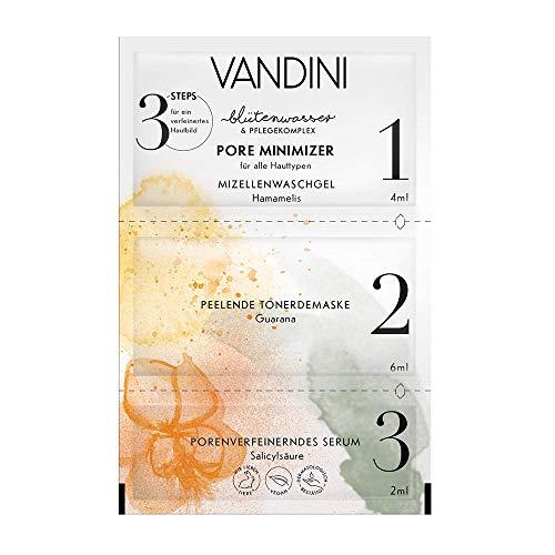 VANDINI POREMINIMIZER 3-Step Maske, 2er Pack(2 x 12 ml)