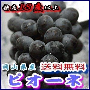 岡山県産 種なしピオーネ 約2kg産地化粧箱入 贈答用秀品