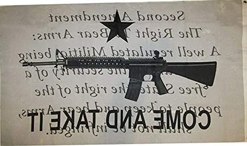 Hebel Gonzales Come Take It Gun Writing Background 2nd Amendment 3x5 Polyester Flag | Model FLG - 271