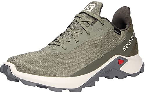 Salomon Alphacross 3 Gore-Tex (impermeable) Hombre Zapatos de trail running, Verde (Deep Lichen Green/Vanilla Ice/Quiet Shade), 42 EU