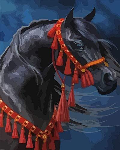 NumbersDigital Schilderij met olieverfschildering, doe-het-zelf dieren, horse, handmatig verven, olieverfschildering, doe-het-zelver, voor beginners, digitale schilderij, 40 x 50 cm (zonder lijst)