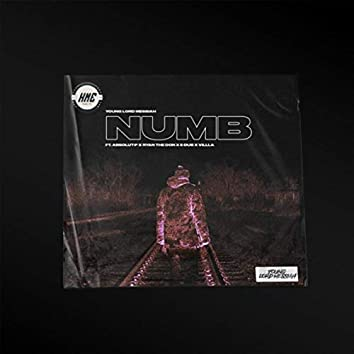 Numb (Remix) [feat. Absolut-P, Ryan the Don, E-Dub & Villla]