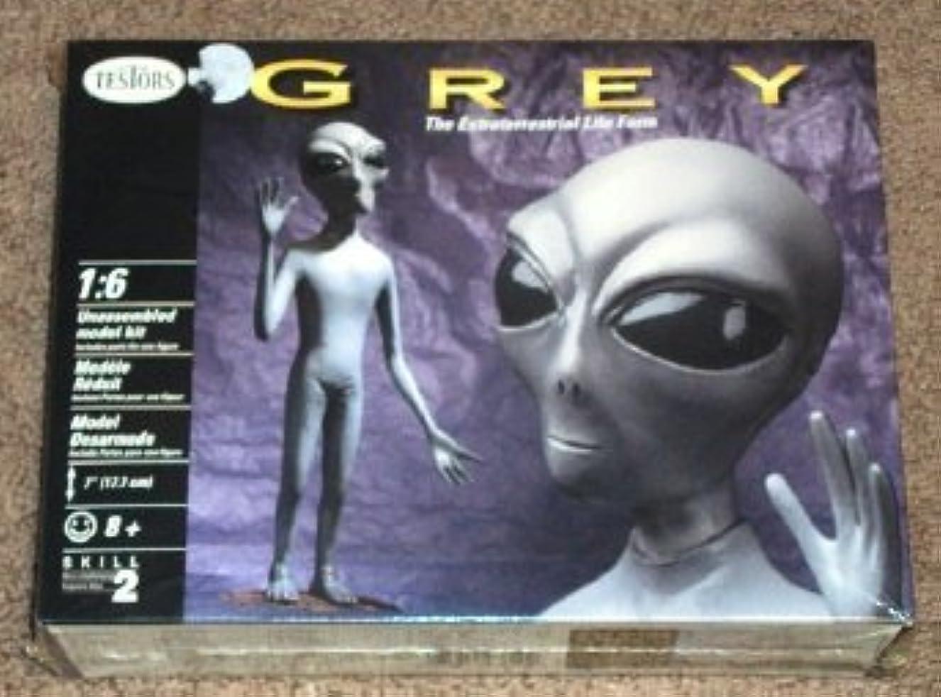 軽食最も遠い受け継ぐTestors Grey / The Extraterrestrial Life Form 1:6 [並行輸入品]