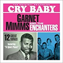 garnet mimms and the enchanters