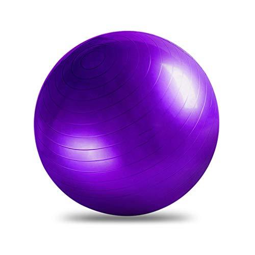 GASSDINER Pelota de Ejercicio para la Aptitud Estabilidad Equilibrio Guía de Entrenamiento de Yoga Diseño de Bomba rápida
